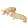 Pair of Adult Pigs Animals for Dollhouse Farm
