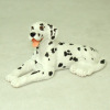 Reclining Dalmation Pet Dog