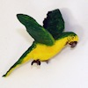 Green and Gold Macaw Parrot with Wings Spread