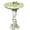 Birdbath with Water and Bird
