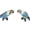 Pair of Blue Lovebirds