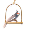 Alice Zinn Handcrafted Cockatiel Pet Bird with Perch