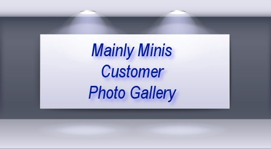 Mainly Minis Customer Picture Gallery