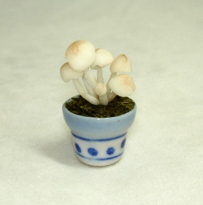 Handcrafted Mushrooms in Ceramic Pot