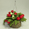 Tomato Plant in Woven Hanging Basket