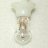 Working Clear Light Bulb with Socket