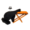 Halloween Witch Magic Ironing Board With Levitating Iron