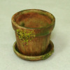 Aged Mossy Flower Pot