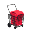 Grocery Shopping Cart With Bag