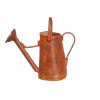 Copper Color Metal Watering Can