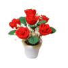 Red Roses in Pot