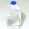 Dollhouse Gallon Size Water Bottle Jug