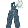 Wearable Ladies Denim Overalls and Top