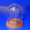 Large Glass Dome With Wood Base from Phil Grenyer