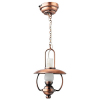 Working LED Hanging General Store Lamp -Battery Op