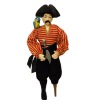 Artisan Crafted Dollhouse Doll Peg Leg Pirate With Parrot