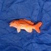 Dollhouse Miniature Red Snapper Fish