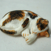 Sleeping Calico Cat