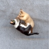 Kittens Playing - Black and White and Siamese