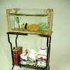 Deluxe Reutter Glass Aquarium Set on Stand