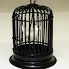 Black Birdcage with Pet Bird