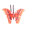 Orange Butterfly Silk Moth Artisan Crafted