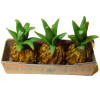 Box of Pineapples