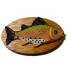 Whimsical Mounted Speckled Trout Fishing Trophy
