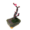 Tanuki and Rosebud Japanese Asian Ume Plum Bonsai