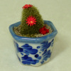 Handcrafted Large Cactus in Blue and White Ceramic Pot