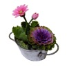 Twin Heart Decorative Purple Kale and Flowers in Metal Tub