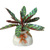 Wilhelmina Artisan Crafted Sword Plant In Porcelain Sack