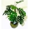 Wilhelmina Handcrafted Tropical Monstera Floor Plant