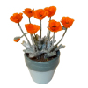 Wilhelmina Artisan Poppy Flower Plant In Clay Pot